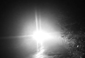 Glare in the rear vision mirror